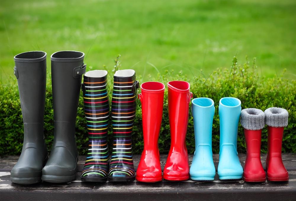 Best Wellington Boots