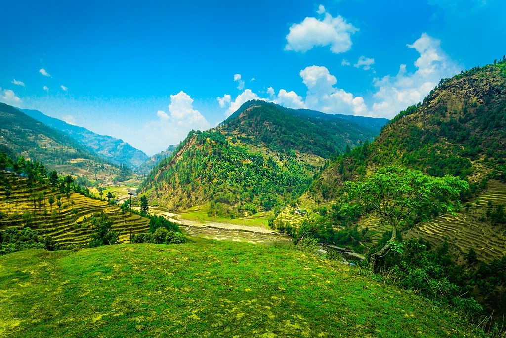 Himalayan mountains and rice field
