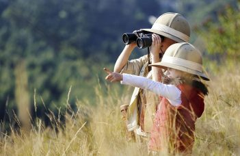 Best Binoculars for Safari